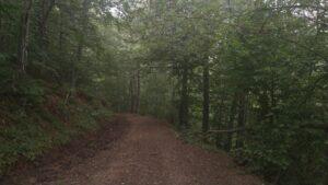 Valle de Caloca 3