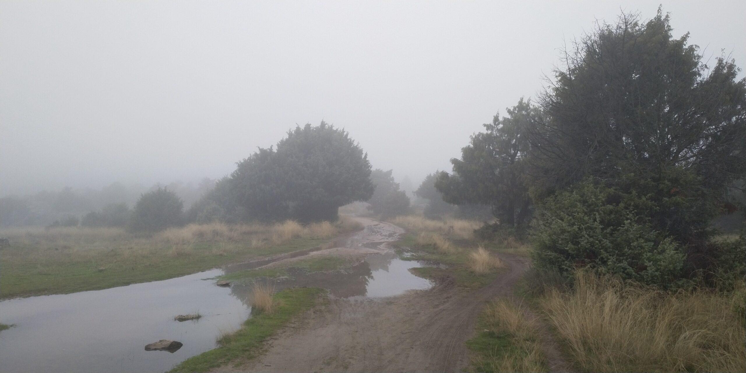 Rutas de la Cascada del Corvacho y de la Cruz del Pan 6