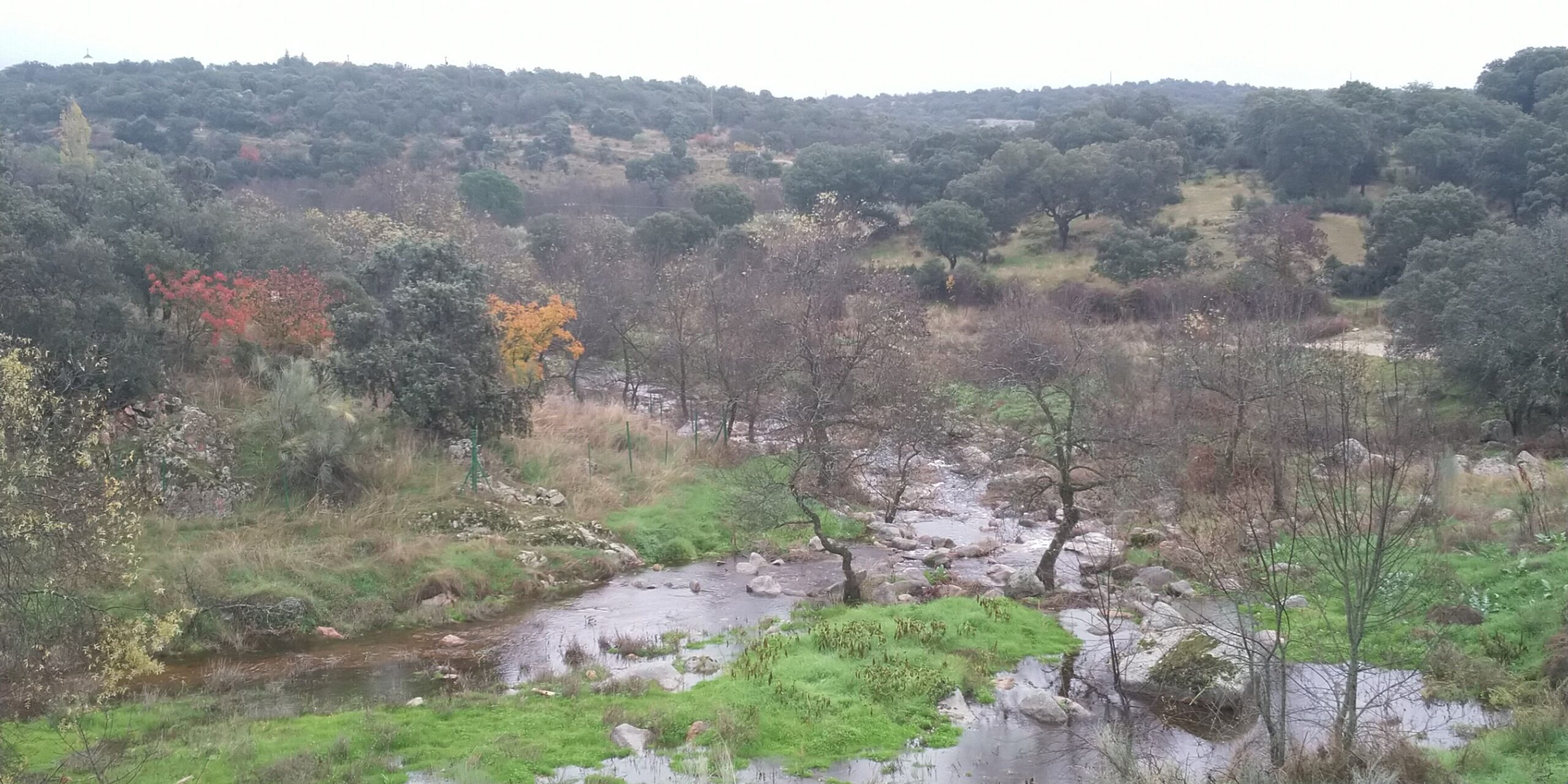 Senda ecológica de los Molinos del río Perales 1