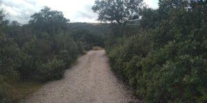 Senda ecológica de los Molinos del río Perales 3