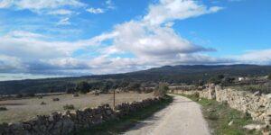 Camino de La Retuerta 2
