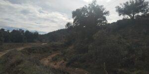 Camino de la Fuente del Rey 4